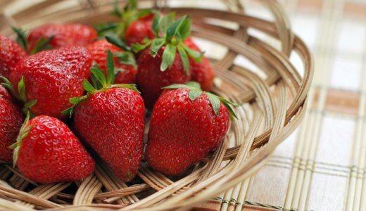 【図解】イチゴの香りはイチゴではない? ~人間が作り出した香り~
