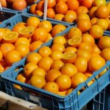 [Graphic explanation] Orange Production – Where Do We Get Orange Oil From?