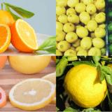 【まとめ】シトラスオイル(柑橘系精油) オレンジ、レモン、ライム、グレープフルーツ、ゆず