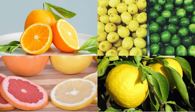 citrus-orange-lemon-lime-grapefruit-yuzu